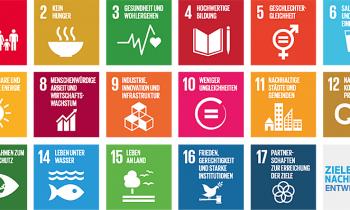 SDGs – Digitalisierung – Freiwilligenarbeit